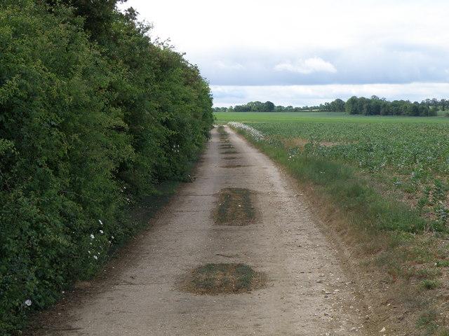 Hard track and Pathfinder walking trail