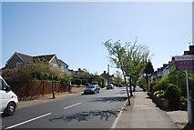 TQ3765 : Bolderwood Way by N Chadwick