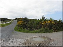 B8121 : Road at Derrymancher by Kenneth  Allen