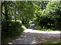 TM3266 : Church Road, Bruisyard and footpath to Shrublands Farm by Adrian Cable