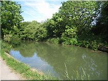SU7451 : Basingstoke canal - Colt Hill by Sandy B