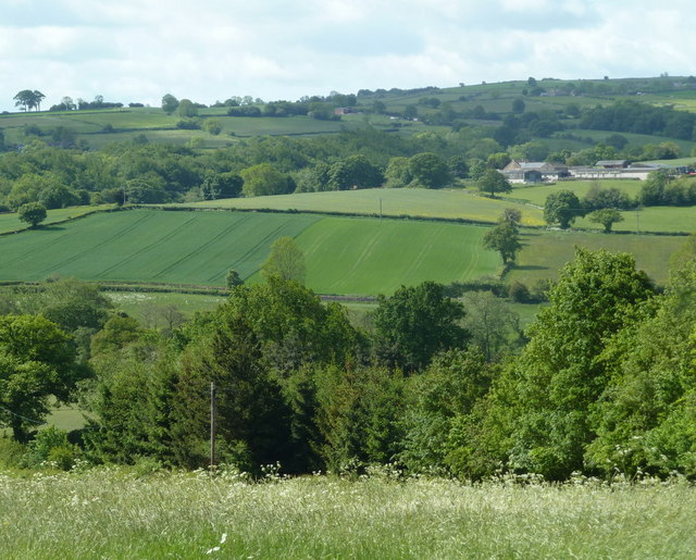 Countryside view, Brindwoodgate