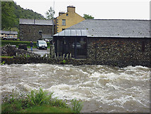 NY3816 : Glenridding Beck in flood by Karl and Ali