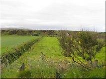 B8227 : Stramartin Townland by Kenneth  Allen
