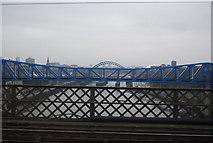 NZ2463 : Bridges over the Tyne by N Chadwick