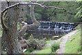 NZ8301 : Small fall on Eller Beck by Pauline E