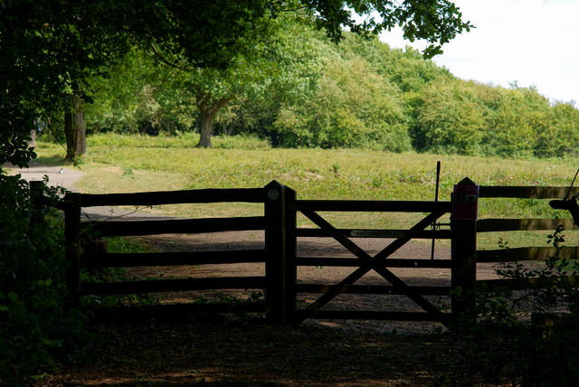 Gateway to Colley Hill, Surrey