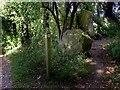 SU6385 : Sarsen Stones, Ipsden by Des Blenkinsopp
