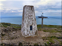 SH7683 : Great Orme Summit by David Dixon
