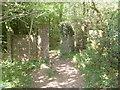 SP8906 : Footpath leading into Great Widmoor Wood by David Hillas