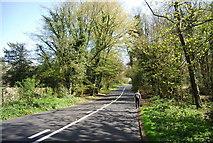 TQ4251 : Kent Hatch Rd, Limpsfield Common by N Chadwick