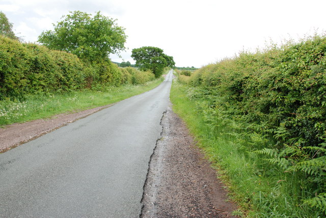 Mansty Lane Looking Towards Mansty Farm