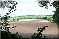 SU5928 : Farmland near Cheriton by Graham Horn