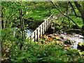 SK2772 : Foot Bridge by Tony Bacon