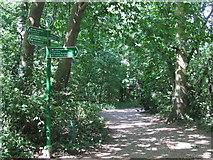 TQ3870 : Green Chain Walk and Capital Ring, Beckenham by Malc McDonald