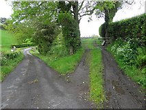 H4570 : Road and lane, Beagh by Kenneth  Allen