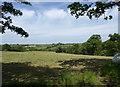 SS8517 : Field near Higher Mogworthy Cross by Derek Harper