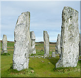 NB2133 : Gneiss Monoliths at Calanais by Anne Burgess