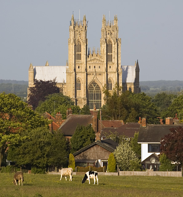 Beverley Minster from the Westwood