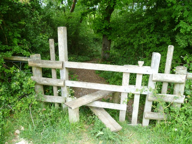 Stile into wood above Wellcombe Bottom by Shazz