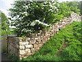 SD2271 : Furness Abbey: Precinct Wall by Jonathan Thacker