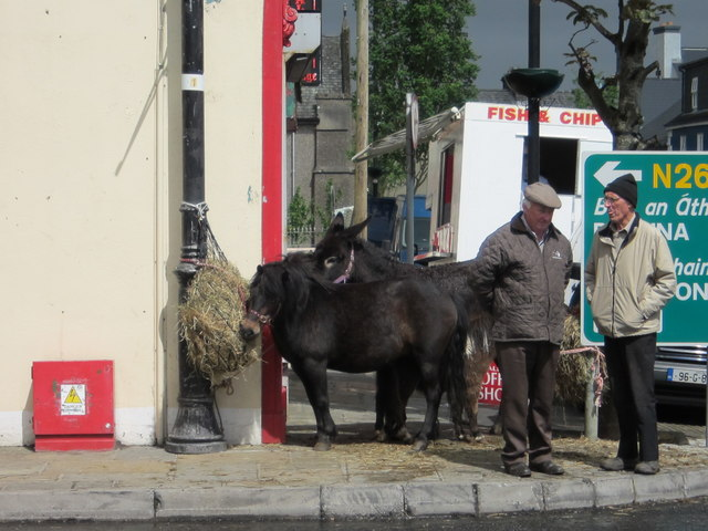 Foxford Goat Fair 2011