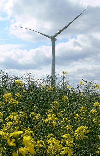 Turbine at Low Spinney Wind Farm by Mat Fascione