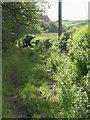 SS8216 : Two Moors Way at Bradford Moor by Derek Harper