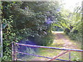 TM2863 : Circular Walk off the B1120 Badingham Road by Adrian Cable