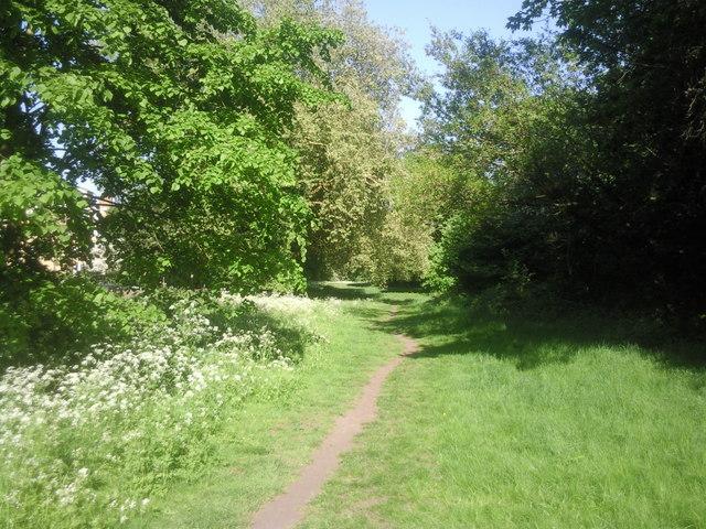 Path along the northern edge of Putney Heath