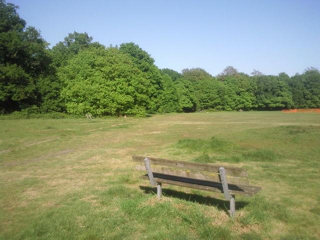 Seat on Putney Heath