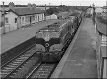 O1671 : Train at Laytown station by The Carlisle Kid