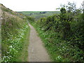 SX2250 : Coast path near Downend Point by Philip Halling