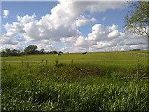 SD9201 : Fields in the Medlock Valley by Steven Haslington