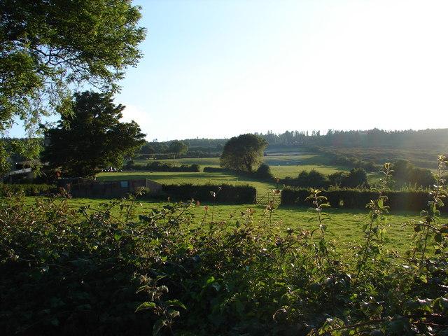 Fields in the evening sunshine