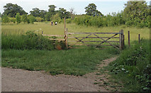 TQ5782 : Path to lakes, Belhus Country Park by Roger Jones