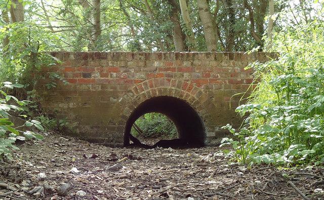 Bridge over dry brook, Belhus