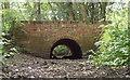 TQ5682 : Bridge over dry brook, Belhus by Roger Jones