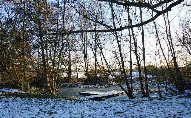 Winter view, edge of Little Brick Kiln Wood, Belhus