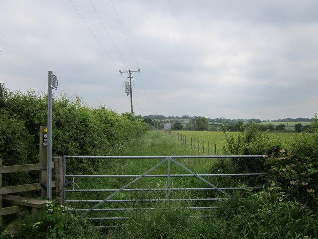 Footpath at Long Green