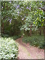 TM2544 : Footpath to Newbourne Road by Geographer