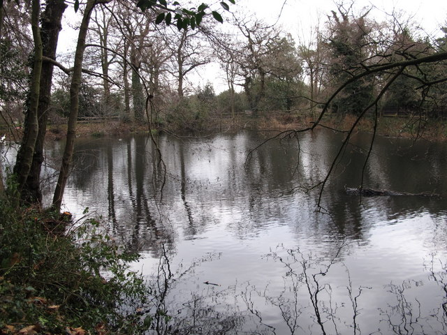 Lake south of Hollydale Recreation Grounds (6)