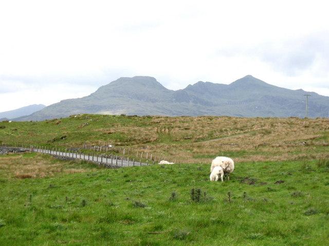 The Moelwyn Mountains by Derek Voller