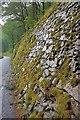 NY3018 : Stone Retaining Wall by Mick Garratt