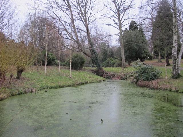 Pond, Hayes Recreation Gardens (5)
