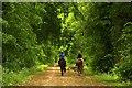 SP5706 : Riders on the bridleway by Steve Daniels