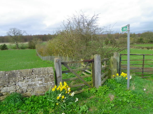Footpath near Staindrop