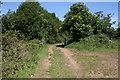 SJ4056 : Gate to Knowl Lane, Churton by Jeff Buck