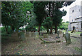 TG0206 : St Peter, Reymerston - Churchyard by John Salmon