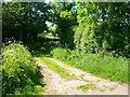 SJ4256 : Footpath to Aldford by Jeff Buck